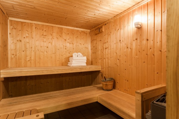 Shared Sauna in Modern Chalet